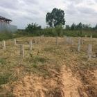 Фундамент на забивных ж/б сваях для деревянного каркасного дома в поселке Лунево Костромской области от компании Стройматик